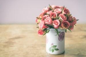comment garder des roses le plus longtemps possible