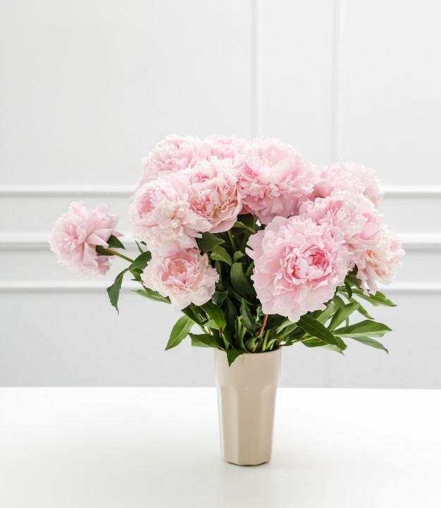 comment prendre soin de ses fleurs