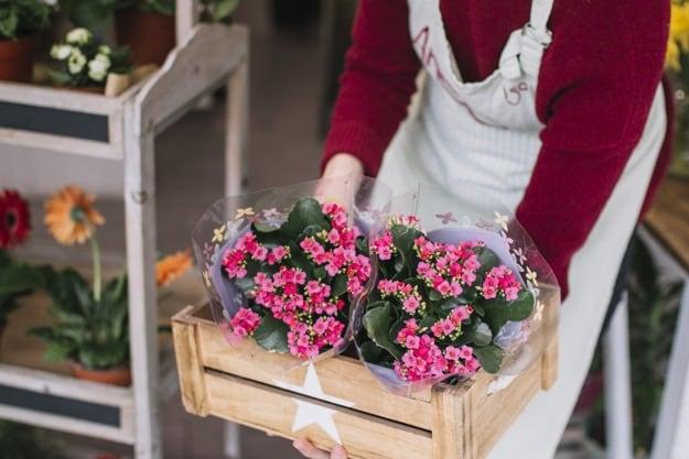 Livraison fleuriste Bruxelles